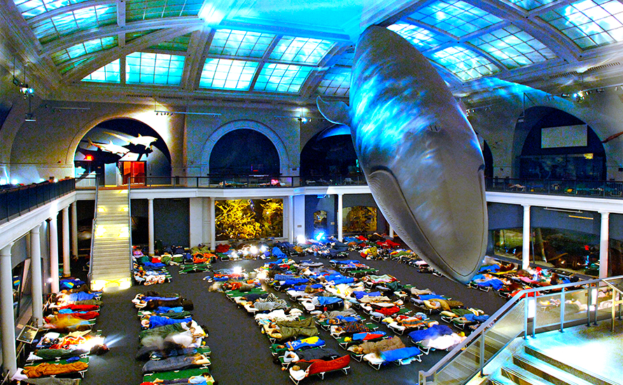 An Adults-Only Night at the Museum - What Should We Do™