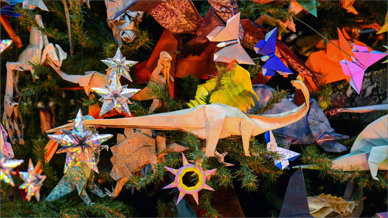 Origami Tree Holiday Natural History Photos