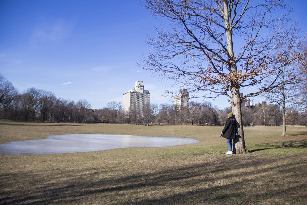 Prospect Park Brooklyn Do